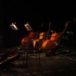 В Театре Станиславского и Немировича-Данченко устроили экскурсию по оркестру
