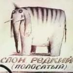 "Слон редкий, полосатый, кличка ""Балдахин"""
