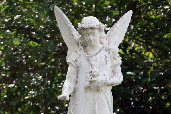 В Астрахани нашли могилу оперной певицы начала ХХ века. Фото - Виктор Погонцев/ РГ