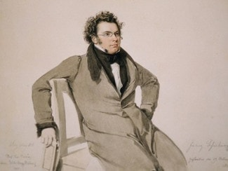 Франц Шуберт. Акварель - Вильгельм Август Ридер, 1825