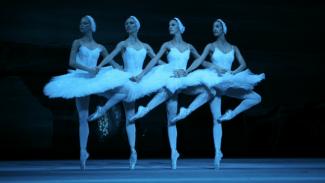 Московское «Лебединое озеро» собрало у киноэкранов 120 тыс. балетоманов из 34 стран