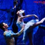 В Ростове «Имперский русский балет» показал «Лебединое озеро». Фото - Анна Косова