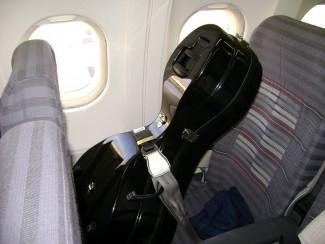 Согласно правилам перевозки, размещенным на сайте авиакомпании, музыкальные инструменты относятся к нестандартному багажу