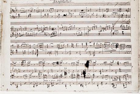 В 1875 году дирекция Императорских театров предложила Чайковскому написать музыку балета по сценарию Владимира Бегичева. В черновом варианте балет носил не то название, под которым мы сегодня его знаем. Какое название предполагалось изначально?