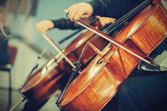 В Ботаническом саду пройдут концерты классической музыки
