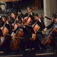 Волшебную виолончель и бархатный альт услышат тюменцы в филармонии