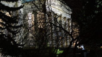 В ГМИИ имени Пушкина станет еще больше музыки. Фото - Владимир Вяткин