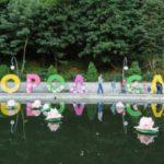 Воронежский «Город-сад» завершился симфоническим концертом