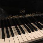 Личный рояль Михаила Плетнева прибыл в Пермь раньше маэстро
