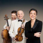 Венское Брамс-трио