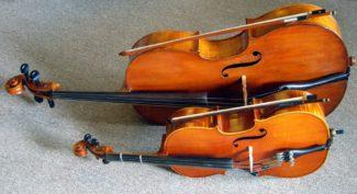 Скрипка и виолончель. Фото - mixnetm.ru