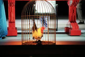 «Золотой петушок» пропоет в «Геликоне». Фото - Ирина Шымчак