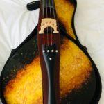 Первая в мире янтарная виолончель Борислава Струлёва