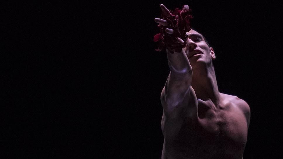Балет «Призрак розы». Фото - Alice Blangero