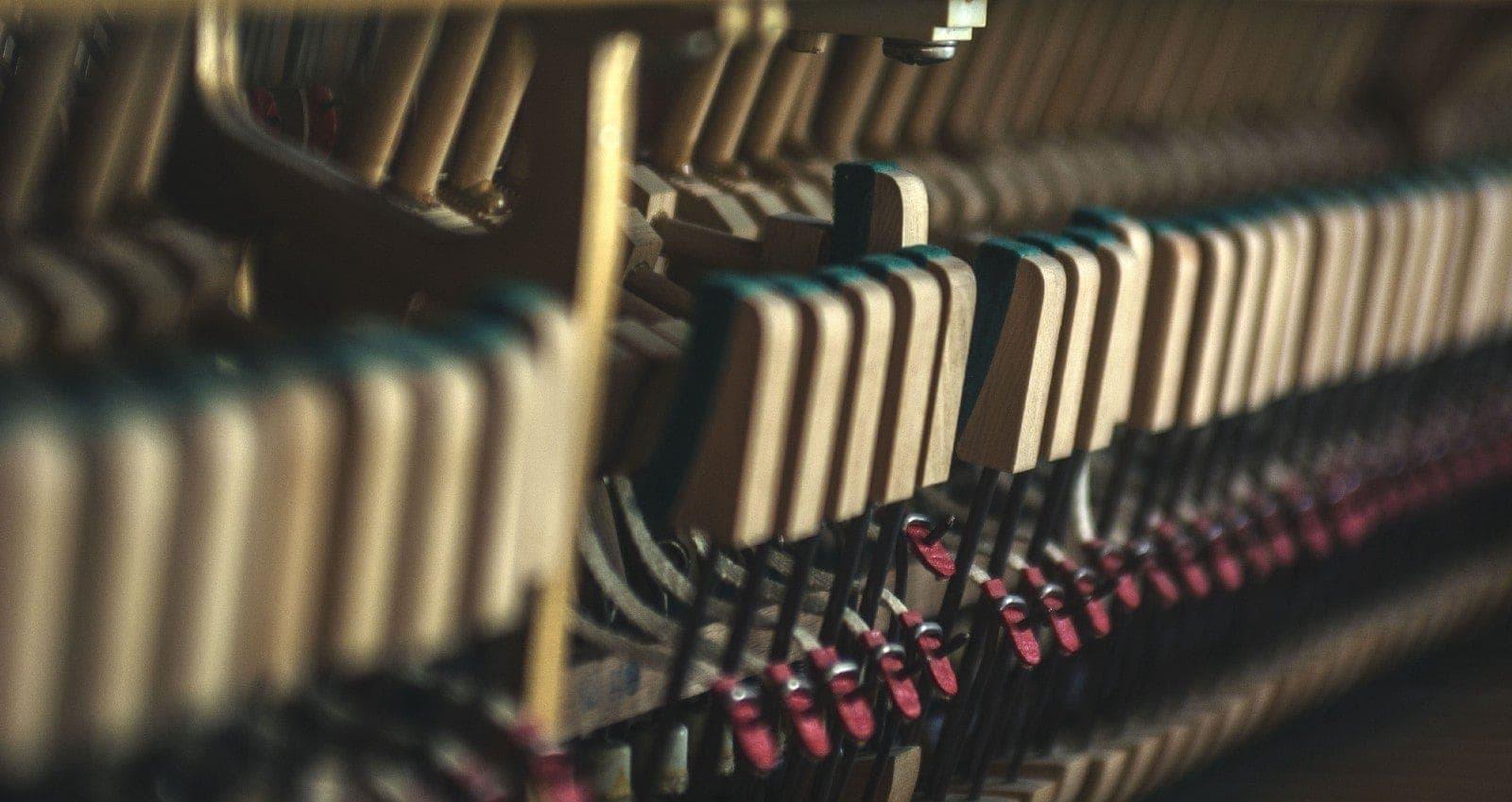 Механика фортепиано. Фото - Ирина Абрамова