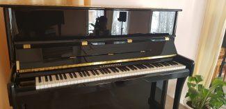 Серия подаренных инструментов носит имя пианиста-виртуоза Николая Рубинштейна