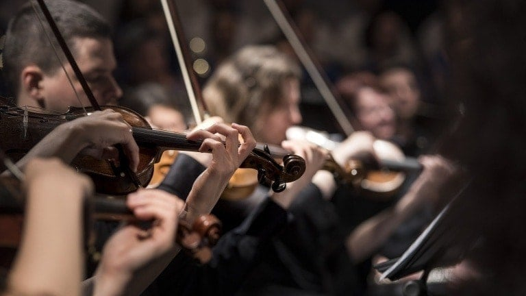 В Вене откроется Академия Санкт-Петербургского Дома музыки