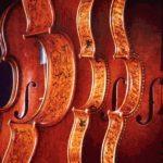 Владимир Спиваков выступил против ограничения закупок иностранных музыкальных инструментов