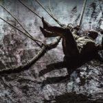 На сцене Музыкального театра имени Станиславского и Немировича-Данченко пройдут последние показы спектакля «Ксенос». Фото - Jean Louis Fernandez