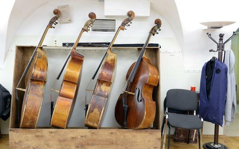 Московских музыкантов передумали подселять к ветеринарам