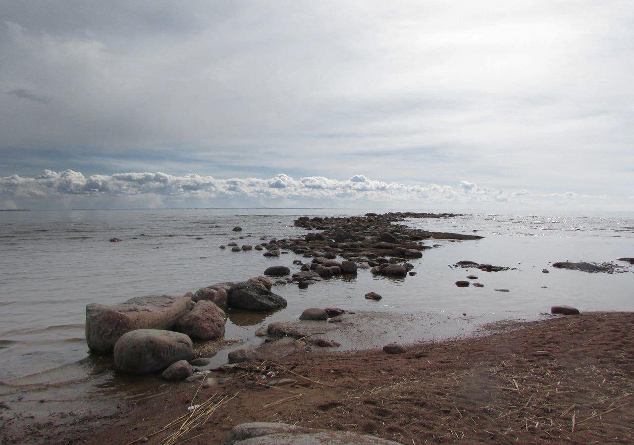 Репино, берег Финского залива