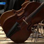 Концерты VII Транссибирского Арт-фестиваля проходят в Страсбурге