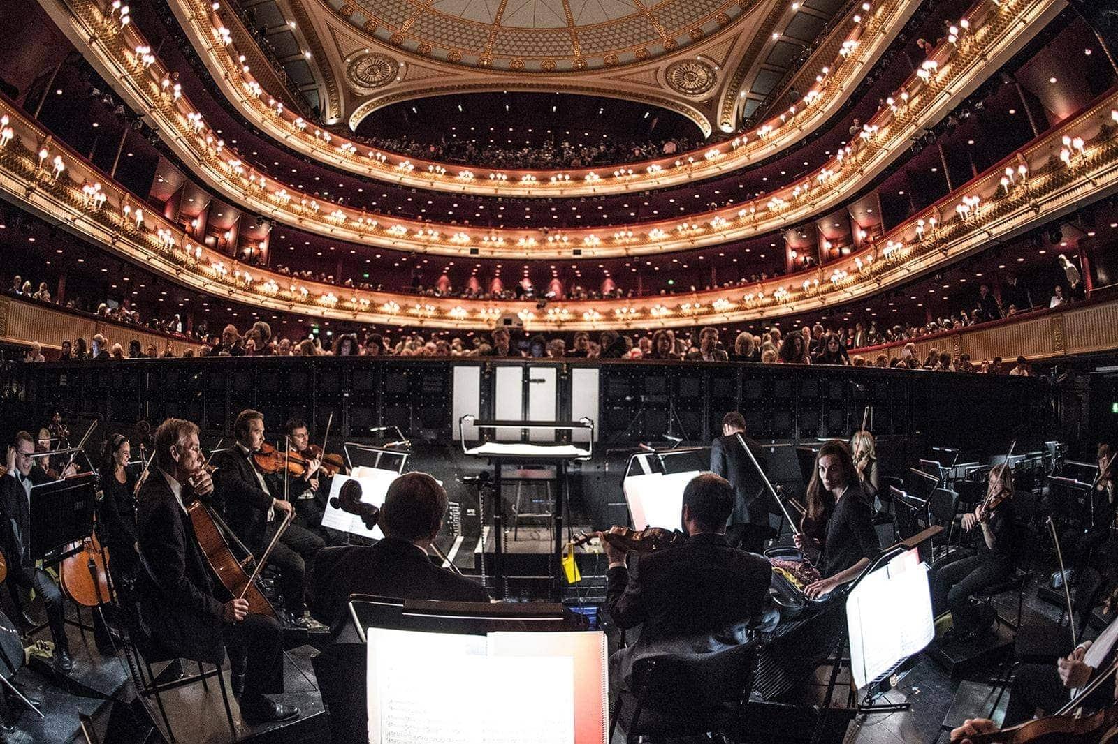 inside orchestra - Кто вы в мире академической музыки?