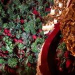 flowers1 150x150 - В оперном театре Барселоны прошел концерт для 2292 комнатных растений