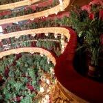 flowers3 150x150 - В оперном театре Барселоны прошел концерт для 2292 комнатных растений