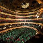 flowers4 150x150 - В оперном театре Барселоны прошел концерт для 2292 комнатных растений