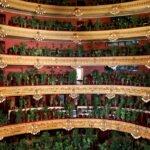flowers5 150x150 - В оперном театре Барселоны прошел концерт для 2292 комнатных растений