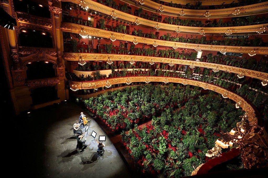 В оперном театре Барселоны прошел концерт для 2292 комнатных растений