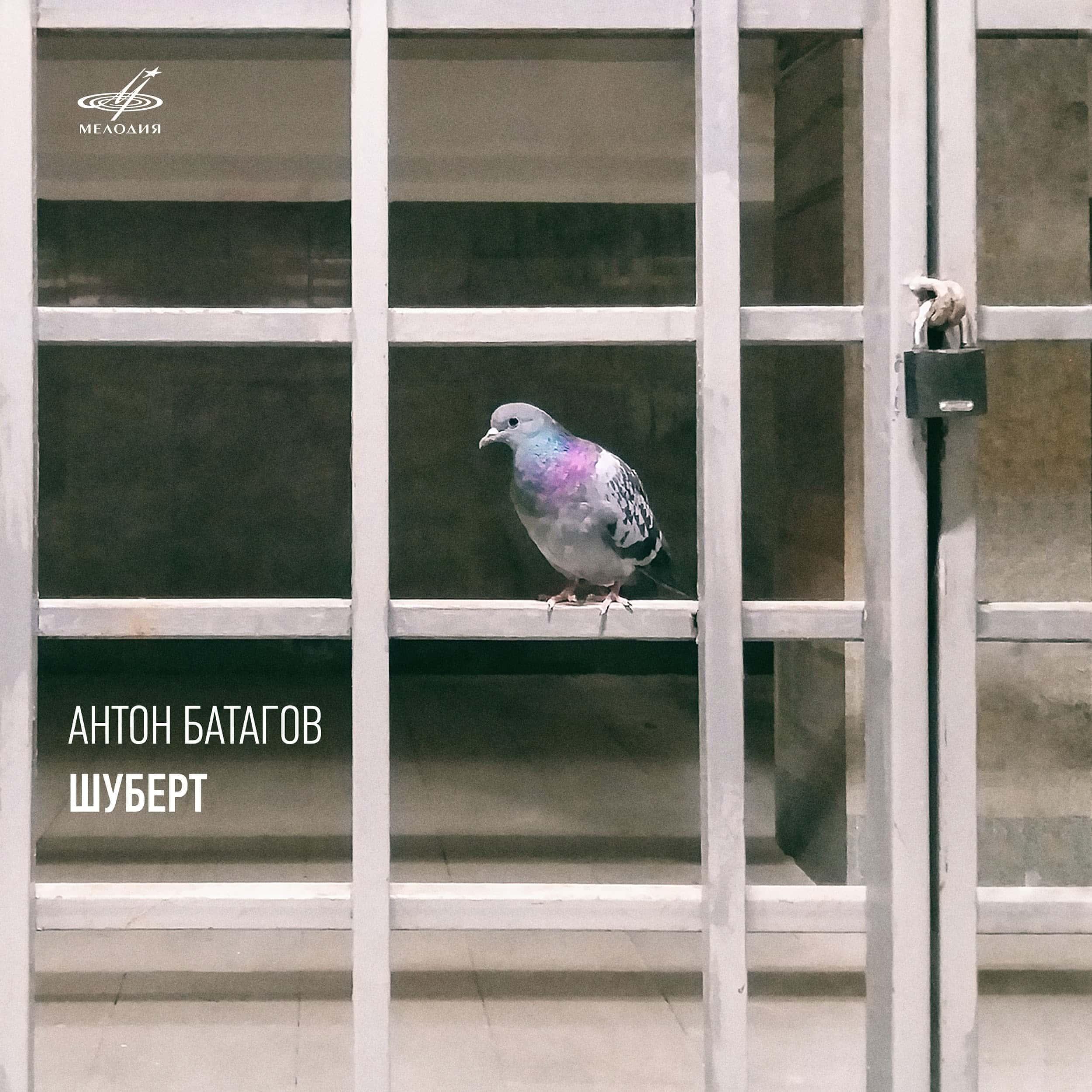 Антон Батагов исполняет Шуберта