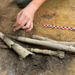На севере Франции нашли редкую римскую тубу